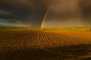 Messines from about 400m west of Le Rossignol Farm - Rainbow